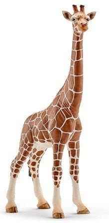 Schleich (SLH14750): Żyrafa samica