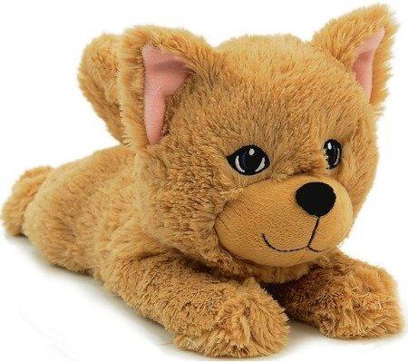 TM Toys (DKH8225): Snuggiez Maskotka Kotek Ginger